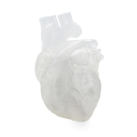 Cartouche Résine SLA Form 2 Elastique 1L